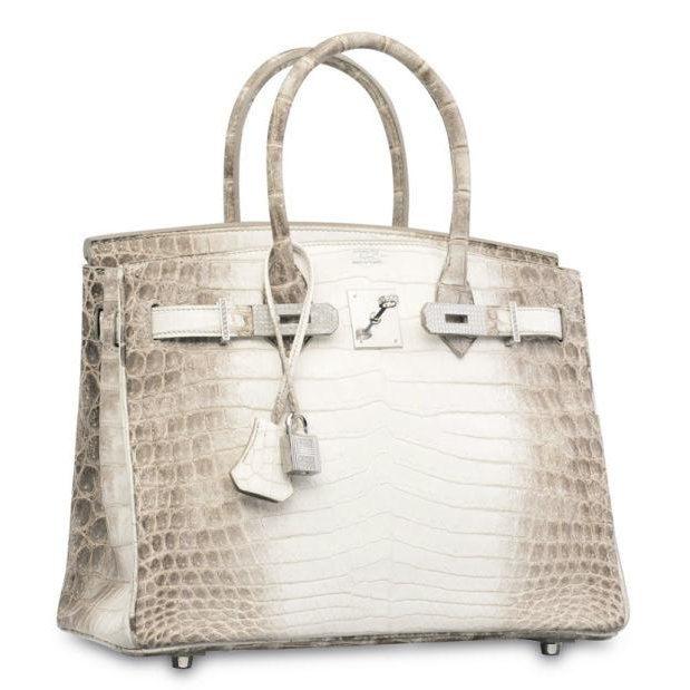 Hermès Birkin Bag worth $300,168